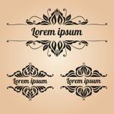 Εκλεκτής ποιότητας διακοσμήσεις με τα floral στοιχεία Σύνολο για τις προσκλήσεις, gre Στοκ εικόνα με δικαίωμα ελεύθερης χρήσης