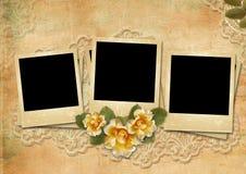 Εκλεκτής ποιότητας καταπληκτικό υπόβαθρο με polaroid-πλαίσια και τριαντάφυλλα Στοκ Εικόνες