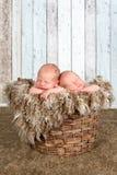 Εκλεκτής ποιότητας καλάθι με τα δίδυμα μωρά Στοκ Φωτογραφία