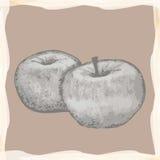 Εκλεκτής ποιότητας μήλα Στοκ Εικόνες