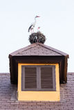 Εκλεκτής ποιότητας ξύλινο παράθυρο Στοκ εικόνα με δικαίωμα ελεύθερης χρήσης