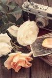 Εκλεκτής ποιότητας οικογενειακές φωτογραφίες τριαντάφυλλων και παλαιά κάμερα βαμμένος στοκ φωτογραφίες