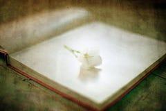 Εκλεκτής ποιότητας λουλούδι και βιβλίο Στοκ εικόνα με δικαίωμα ελεύθερης χρήσης