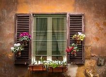 Εκλεκτής ποιότητας παράθυρο με τα λουλούδια στα δοχεία στοκ εικόνες