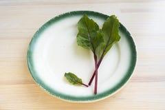 Εκλεκτής ποιότητας πιάτο με τα φύλλα κόκκινων τεύτλων Στοκ εικόνες με δικαίωμα ελεύθερης χρήσης