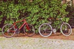 Εκλεκτής ποιότητας ποδήλατο με το πράσινο φύλλο Στοκ εικόνες με δικαίωμα ελεύθερης χρήσης
