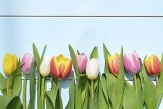 Εκλεκτής ποιότητας πράσινο μπλε υπόβαθρο aqua με τα άσπρα, κόκκινα, ρόδινα και κίτρινα λουλούδια με το κενό διάστημα αντιγράφων Στοκ φωτογραφία με δικαίωμα ελεύθερης χρήσης