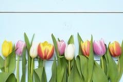 Εκλεκτής ποιότητας πράσινο μπλε υπόβαθρο aqua με τα άσπρα, κόκκινα, ρόδινα και κίτρινα λουλούδια με το κενό διάστημα αντιγράφων Στοκ Εικόνες