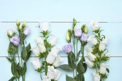 Εκλεκτής ποιότητας πράσινο μπλε υπόβαθρο aqua με τα άσπρα, πορφυρά, ιώδη και κίτρινα λουλούδια με το κενό διάστημα αντιγράφων Στοκ Φωτογραφία