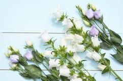 Εκλεκτής ποιότητας πράσινο μπλε υπόβαθρο aqua με τα άσπρα, πορφυρά, ιώδη και κίτρινα λουλούδια με το κενό διάστημα αντιγράφων Στοκ φωτογραφίες με δικαίωμα ελεύθερης χρήσης