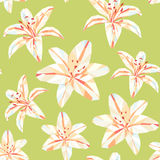 Εκλεκτής ποιότητας σχέδιο λουλουδιών πολυγώνων άνοιξη ζωηρόχρωμο Στοκ εικόνες με δικαίωμα ελεύθερης χρήσης