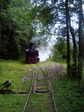 Εκλεκτής ποιότητας τραίνο Στοκ Εικόνα