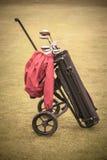Εκλεκτής ποιότητας τσάντα γκολφ Στοκ Εικόνα