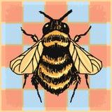 Εκλεκτής ποιότητας υπόβαθρο με τη bumble μέλισσα Στοκ Εικόνα
