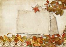 Εκλεκτής ποιότητας υπόβαθρο με το παλαιό ντεκόρ καρτών και φθινοπώρου Στοκ Εικόνα