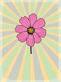Εκλεκτής ποιότητας υπόβαθρο με floral κινητήριο Στοκ Εικόνα
