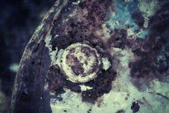 Εκλεκτής ποιότητας υπόβαθρο χάλυβα μεταλλικών πιάτων στοκ φωτογραφία με δικαίωμα ελεύθερης χρήσης