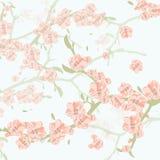 Εκλεκτής ποιότητας υπόβαθρο Watercolor με τα ανθίζοντας λουλούδια της Apple Στοκ Φωτογραφίες