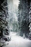 Εκλεκτής ποιότητας χιονώδη δέντρα έλατου Στοκ φωτογραφίες με δικαίωμα ελεύθερης χρήσης
