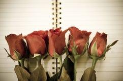 Εκλεκτής ποιότητας ύφος - κόκκινο αυξήθηκε λουλούδι Στοκ εικόνα με δικαίωμα ελεύθερης χρήσης