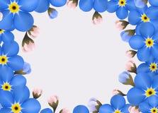 Εκλεκτής ποιότητας Floral Forget-me-not λουλούδι γύρω από το πλαίσιο Στοκ εικόνα με δικαίωμα ελεύθερης χρήσης