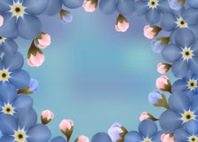 Εκλεκτής ποιότητας Floral Forget-me-not λουλούδι γύρω από το πλαίσιο Στοκ Εικόνες