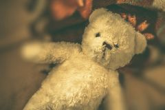 Εκλεκτής ποιότητας Teddy αντέχει Στοκ φωτογραφία με δικαίωμα ελεύθερης χρήσης
