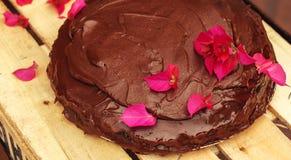 Εκλεκτική εστίαση κινηματογραφήσεων σε πρώτο πλάνο κέικ σοκολάτας Στοκ Φωτογραφία