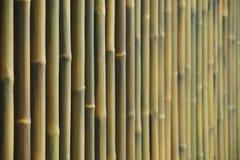 Εκλεκτική εστίαση υποβάθρου τοίχων φρακτών μπαμπού Στοκ Εικόνα