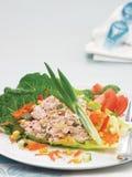 εκλεκτικός τόνος σαλάτας εστίασης μπροστινός Στοκ φωτογραφία με δικαίωμα ελεύθερης χρήσης