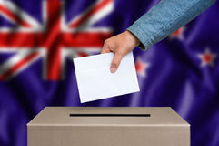 Εκλογή σε νέο Zeland - που ψηφίζει στο κάλπη στοκ εικόνες με δικαίωμα ελεύθερης χρήσης