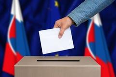 Εκλογή στη Σλοβακία - που ψηφίζει στο κάλπη στοκ εικόνες