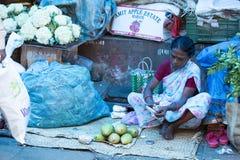 Εκδοτική επεξηγηματική εικόνα ινδική αγορά τροφίμων Στοκ Φωτογραφίες