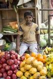 Εκδοτική επεξηγηματική εικόνα ινδική αγορά τροφίμων Στοκ φωτογραφίες με δικαίωμα ελεύθερης χρήσης