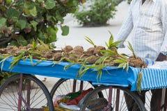 Εκδοτική επεξηγηματική εικόνα Κατάστημα των φρούτων και λαχανικών Στοκ φωτογραφία με δικαίωμα ελεύθερης χρήσης