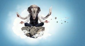 Ελέφαντας που ντύνεται στο επιχειρησιακό κοστούμι Μικτά μέσα Στοκ Εικόνες
