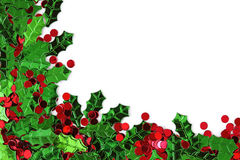 ελαιόπρινος μούρων confett Στοκ Φωτογραφία