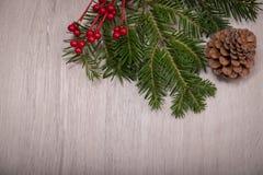 Ελαιόπρινος Χριστουγέννων, δέντρο πεύκων, και κώνος πέρα από ένα ξύλινο υπόβαθρο Στοκ Εικόνες