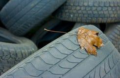 ελαστικά αυτοκινήτου Στοκ φωτογραφία με δικαίωμα ελεύθερης χρήσης