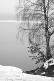 ελαφριά ομίχλη Στοκ Εικόνες