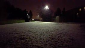 Ελαφριά πτώση χιονιού στο πάρκο τη νύχτα φιλμ μικρού μήκους