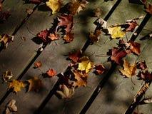 ελαφριά σκιά Στοκ φωτογραφίες με δικαίωμα ελεύθερης χρήσης