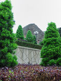 ελαφριά φυτά στοκ φωτογραφία