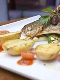 ελαφρύ μεσημεριανό γεύμα Στοκ Εικόνες