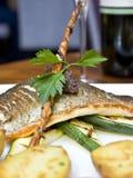 ελαφρύ μεσημεριανό γεύμα Στοκ Εικόνα