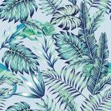 Ελαφρύ υπόβαθρο ζουγκλών χαμαιλεόντων μπλε Στοκ Εικόνες