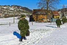 Ελβετικοί μίμοι με προσωπείο του ST Sylvester Στοκ εικόνες με δικαίωμα ελεύθερης χρήσης