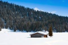 ελβετικός χειμώνας σιτα στοκ φωτογραφία με δικαίωμα ελεύθερης χρήσης