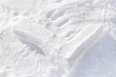 Ελεγχμένος από το χιόνι στοκ φωτογραφίες με δικαίωμα ελεύθερης χρήσης