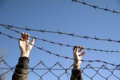 ελευθερία επιθυμίας στοκ εικόνα